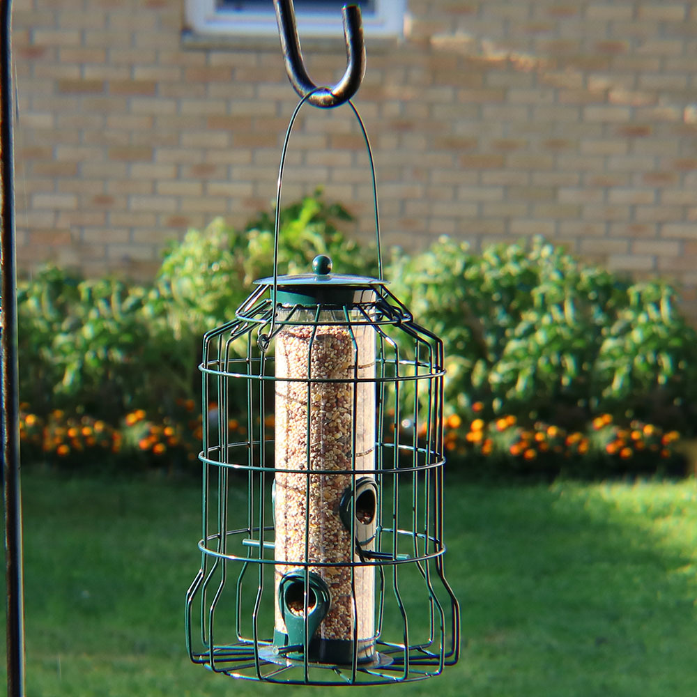 Squirrel Proof Wild Bird Feeder - 10""