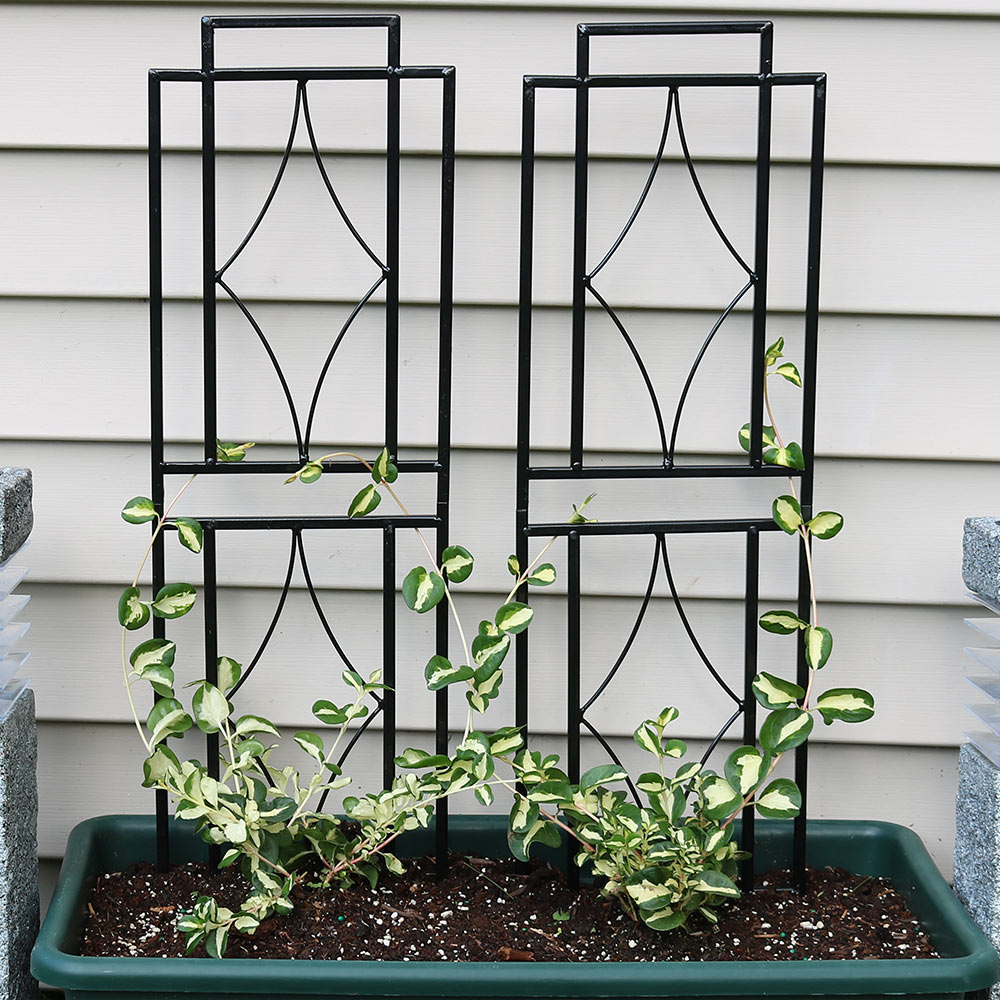 Sunnydaze 30-Inch Contemporary Garden Trellis, Metal Wire for Climbing Plants and Flowers, Set of 2