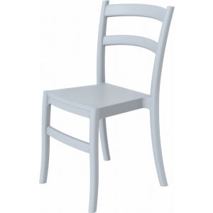 Dining Chair Silver Photo