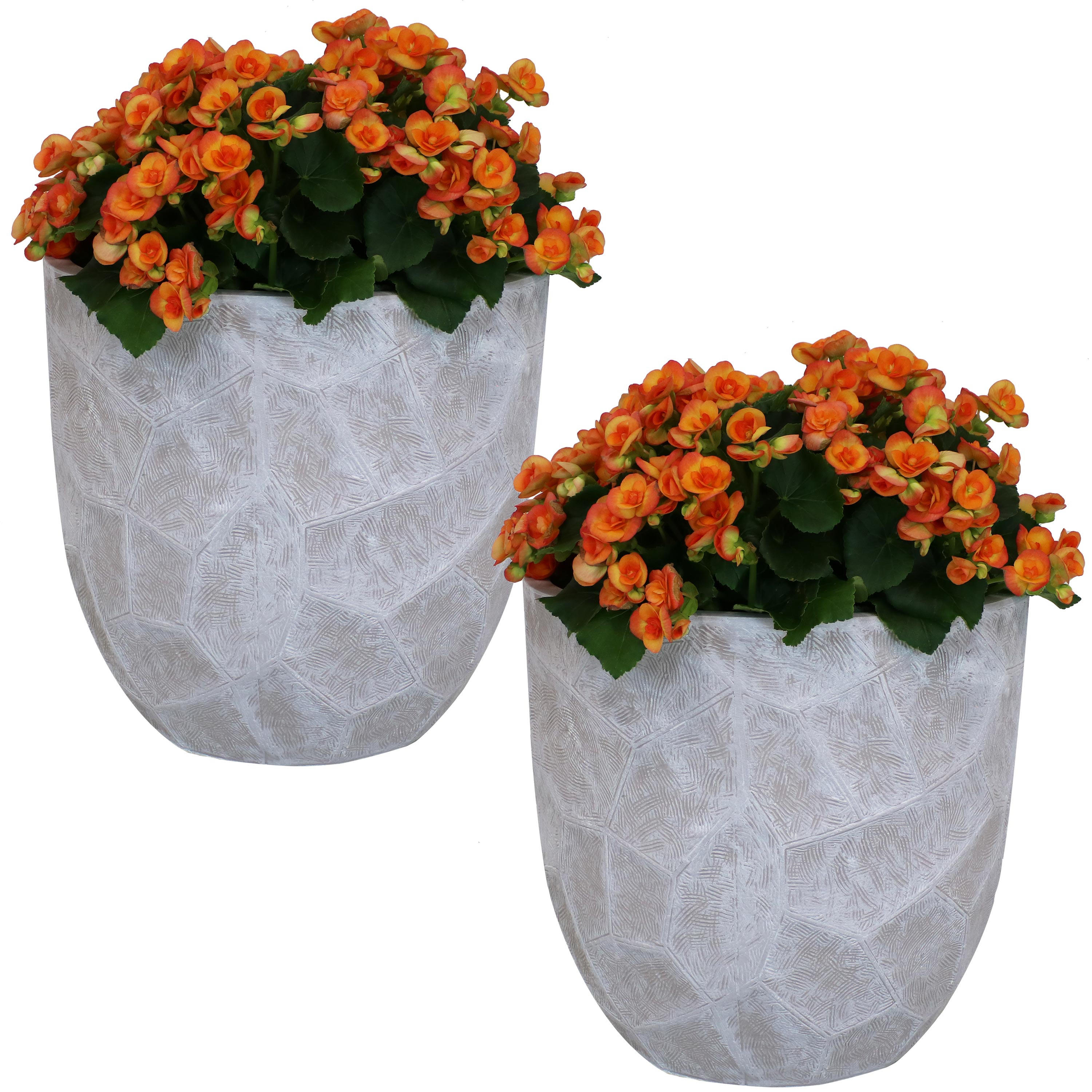 1249 Product Image