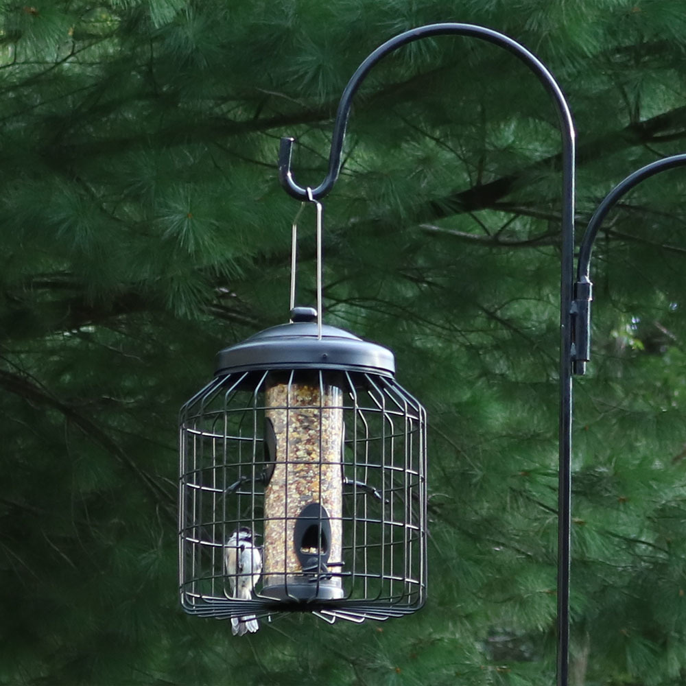 Squirrel Proof Wild Bird Feeder - 12""