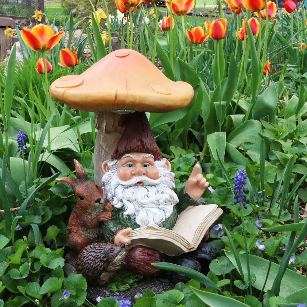 Sunnydaze Bernard the Bookworm Garden Gnome with Mushroom and Solar Light, Outdoor Lawn Statue, 16 Inch Tall